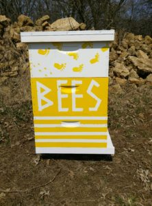 HAFA farmers get their first taste of beekeeping